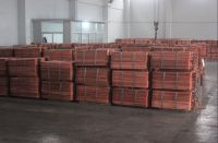 Electro copper Cathode Grade A 99.99%
