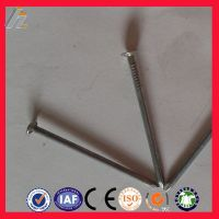 China ISO factory Common Nail/ Wire Nails/ Umbrella Roofing Nail