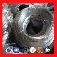 Galvanized Iron Wires/Black Binding Wires From Anping Supplier