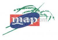 Export Quality Basmati Rice