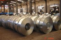 galvanized steel strip in coil