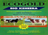 ECOGOLD BIOKSHEERA CATTLE FEED SUPPLEMENT - 100% NATURAL