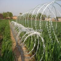 CBT-65 Razor barbed wire