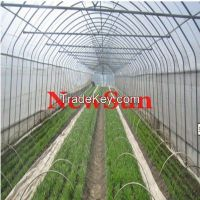 Greenhouse Insect net