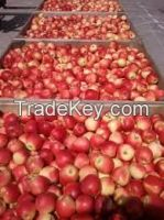 apple fruit, gala apple, Bananas, Oranges, apple,