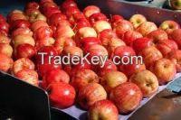 apple, apple fruit, gala apple, Bananas, Oranges,