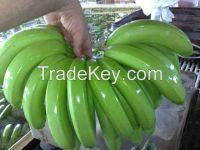 Bananas, Oranges, apple, apple fruit, gala apple for sale
