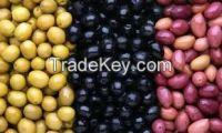 Sell GREEK OLIVES