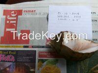 Gauri Valampuri For Sale