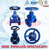 sell ductile iron resilient seated KSB gate valves