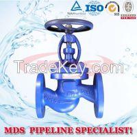 sell DIN cast iron globe valve