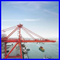 SEL 30T new portal crane from HENAN WEIHUA