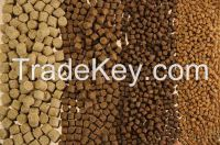 great chance to import fish feed