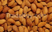 Quality Dried Almond Nut