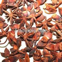 Star Anise With Stem