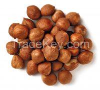Quality Hazelnuts