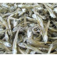 Dried Fish (Dried Anchovy and Dried Herring )