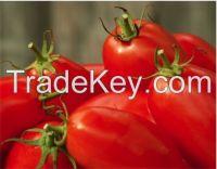 Italian whole canned tomatoes