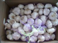 Sell garlic