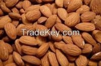 B2B Sell Premium Quality Dried Sweet Almond Nuts