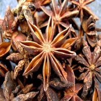 Sell Star Anise