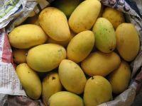Sell Mango
