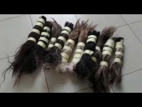 Cattle and Animal Tail Hairs or furs (Treated and Disinfected)