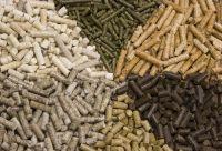 Biomass energy wood pellet for sale
