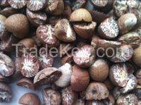 Sell Dried Split Betel Nuts