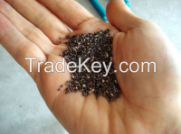 Sell Black and White Chia