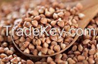 We Supply Brown Buckwheat/Green Buckwheat