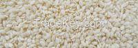 Top Quality Sesame seeds, Chia seeds, Coriander seeds, Alfalfa Seeds, Mustard Seeds