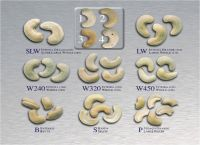High Quality Raw and Plain Cashew Nuts