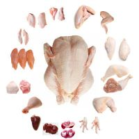 QUALITY WHOLE FROZEN CHICKEN AND CHICKEN PARTS