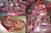 Halal Frozen Beef / Buffalo Meat And Offals ready for supply