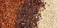 Premium Grade Certified Organic Quinoa Available at Market Rate