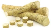 High Quality Natural Organic Fresh and dehydrated Horseradish