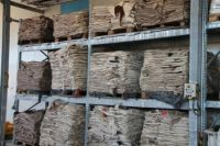 Best Grade and Quality Wet, Salted, Dry Donkey / Cow Skin / Hides Available