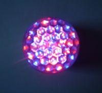 Sell  LED Bulb light