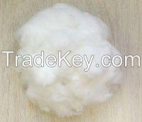 Sell SD RW Virgin polyester staple fiber