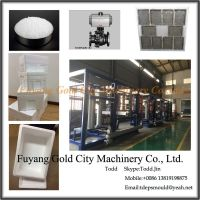 EPS Auto Shape Molding Machine
