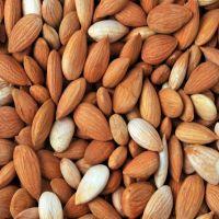Raw apricot kernels
