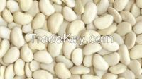 Large Lima Beans, Canned Butter Beans, Chinese White Kidney Beans Flat Size 50-60pcs