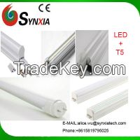 T5 LED Glass Light