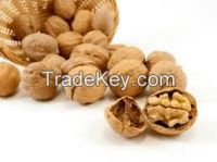 Sell Walnuts