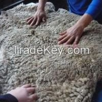 Merino Sheepskins