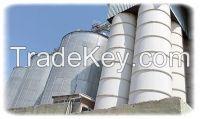 Wheat Flour BEST Prices