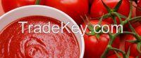 Tomato Paste Halal food canned Tomato Paste