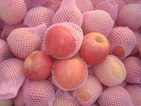 New arrival Fresh Fuji apples