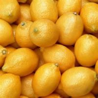Fresh Yellow Eureka Lemons from South Africa- Best Quality and Price